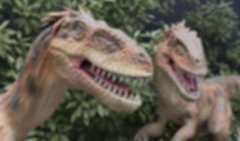 Dino's dinosaurussen