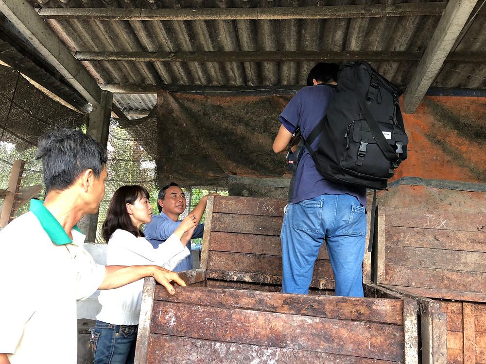発酵の木箱に中の発酵しているカカオは、けっこうみんな驚きます