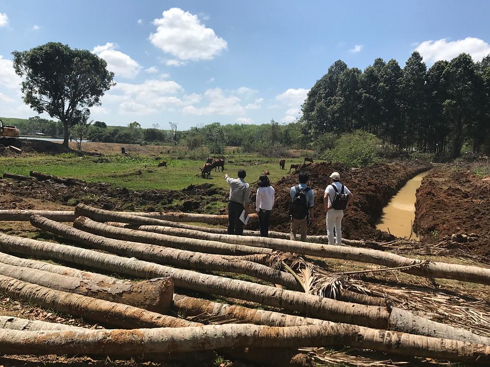 切り倒した木は、橋にしたり、ロッジにしたり…