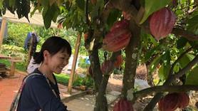 TIEN GIANGのカカオ農園