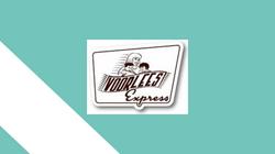 Voorlees Express - artikel