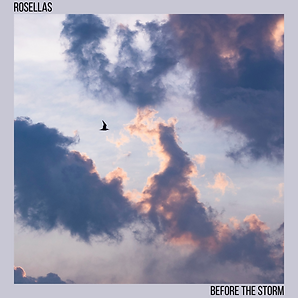 BEFORE THE STORM COVER.png