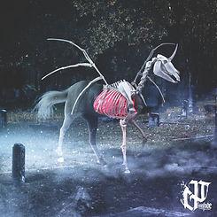 Skeletal Horse.jpg