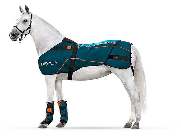 whitehorse-190922-1665-freisteller-gebu-