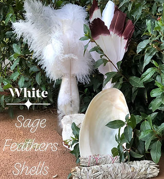 feathers sage.jpg