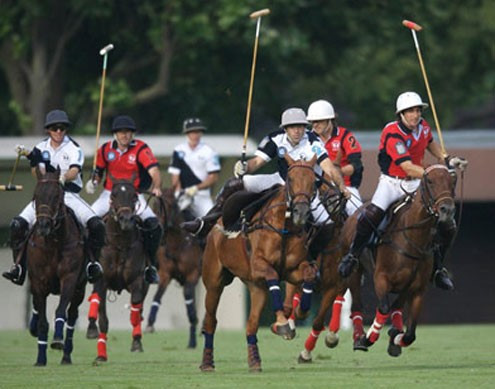 Polo de Paris Perfect match