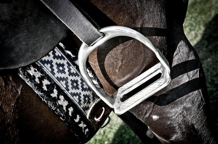 Tout savoir sur le polo