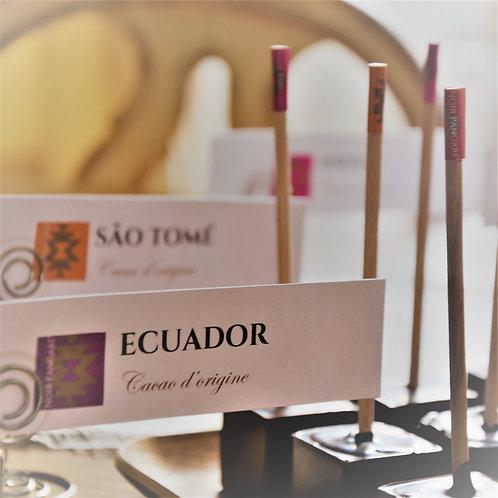Ecuador grands bâtons (par 6)
