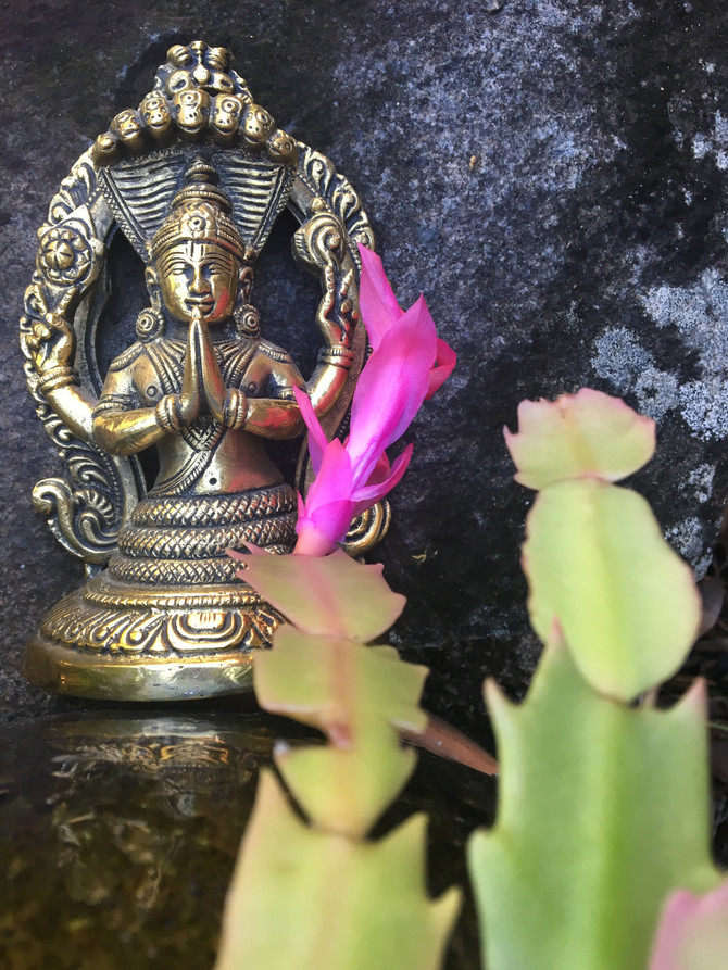 The kriyā-yoga of Patañjali