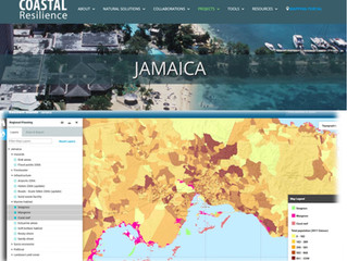 The Jamaica mapping portal on www.coastalresilience.org is live!