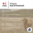 Copy of Livestock.png