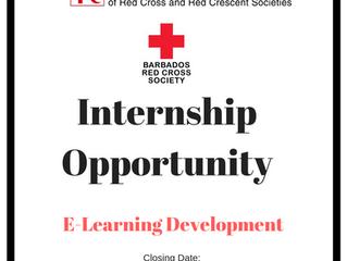 Internship - E- Learning Development