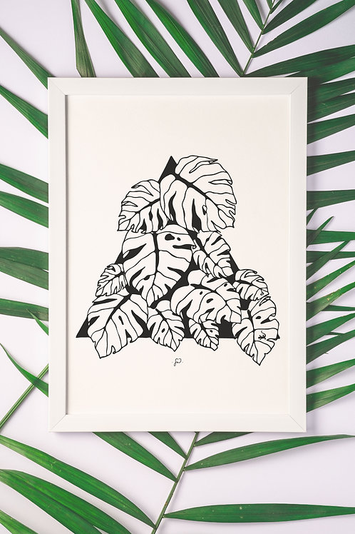 """Monstera and Friend"""