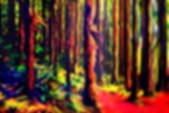 Acid Trip.jpg