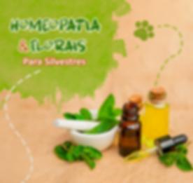 Post_1_Homeopatia.png