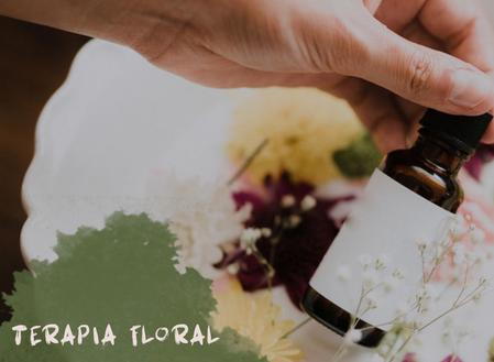 Terceiro episódio: Medicina Alternativa- Terapia Floral: humana ou animal?