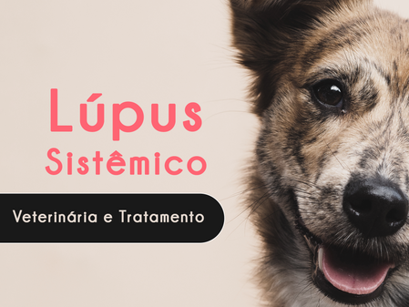 Lúpus Sistêmico - Veterinária e Tratamento