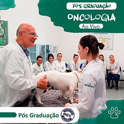 Pós Graduação em Oncologia de Pequenos Animais -  Agosto