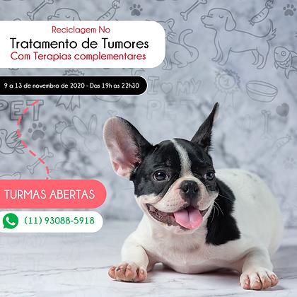 Reciclagem no Tratamento de Tumores com Terapias Complementares-Online.