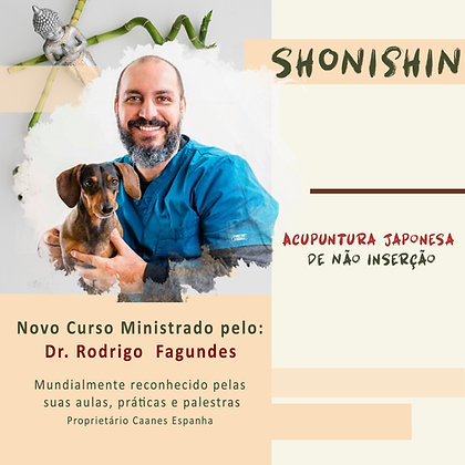 Curso Shonishin - São Paulo - Março