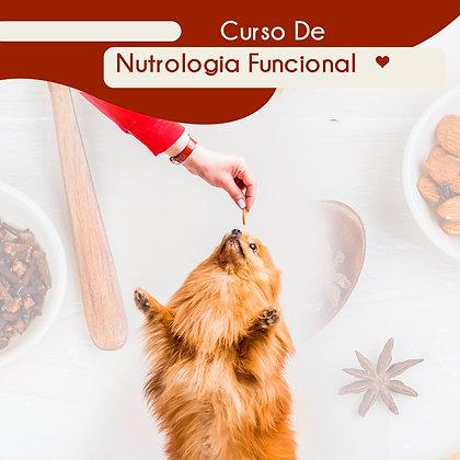 Curso Nutrologia Func. e Dietoterapia Chinesa em Caninos, Felinos e Exóticos