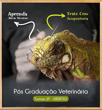 Pós Graduação em Acupuntura Veterinária - São Paulo