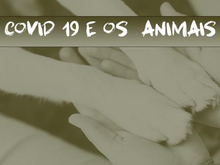 Covid - 19 e os Animais