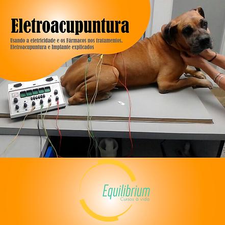 eletrocupunturav3.png