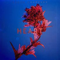 PeterCruseder_Heart.jpg