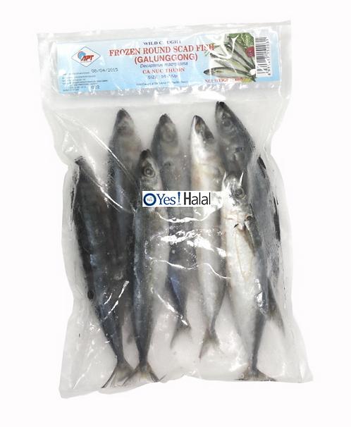 Round Scad Fish (Vietnam, 720g)