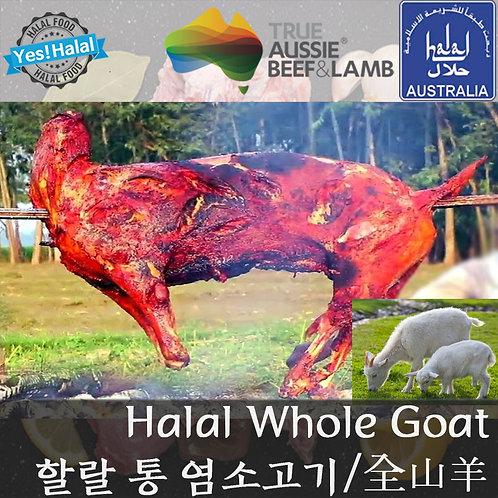 Halal Whole Goat/Halal Whole Goat/할랄 통염소 (14 ~ 18Kg - 18,000won/1Kg)