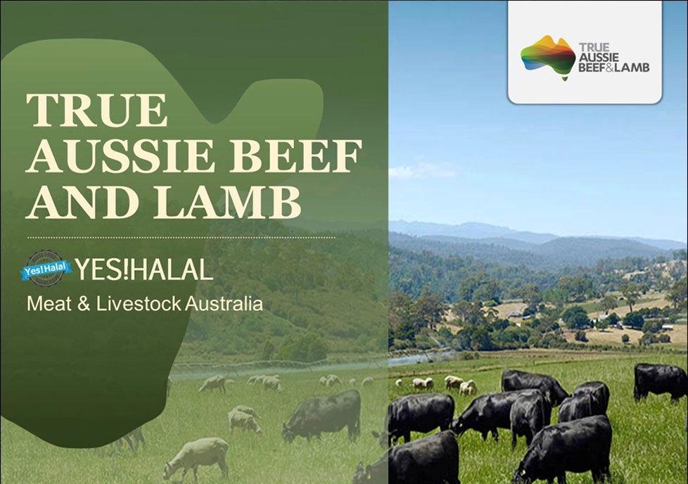 meat lamb beef GMARKET.jpg