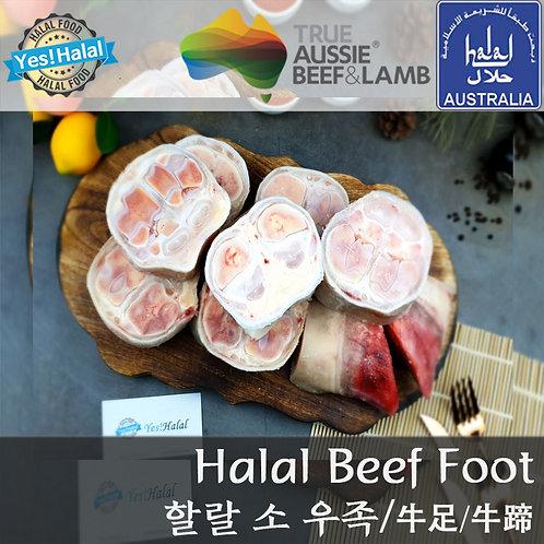 Halal Beef Foot / Feet / Paya (Australian Beef, 3~5Cm Sliced/2Kg - 700won/100g)