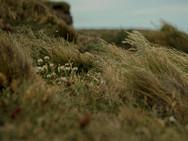 Estrecho de Magallanes 1.jpg