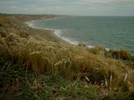 Estrecho de Magallanes 2.jpg