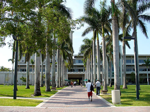 University_of_Miami_Otto_G._Richter_Libr