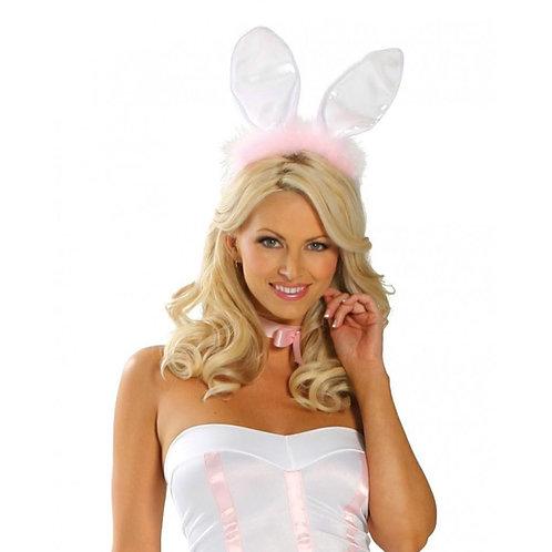 4462 - Bunny Ears