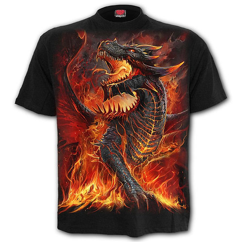 DRACONIS - T-Shirt Black