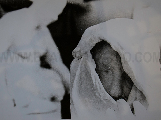 """""""La otra vista"""" Arpillera, polvo de mármol y escayola. 45x 50x 30 cm."""