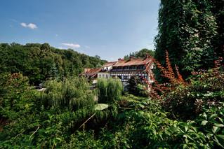 Hotel zatopiony w zieleni