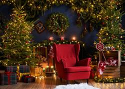 Foto sesje świąteczne