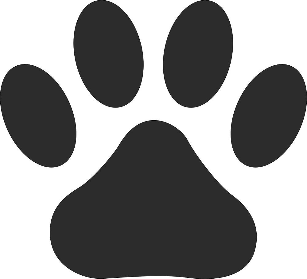 3月18日(月)はお休みします。ペット検診の為。