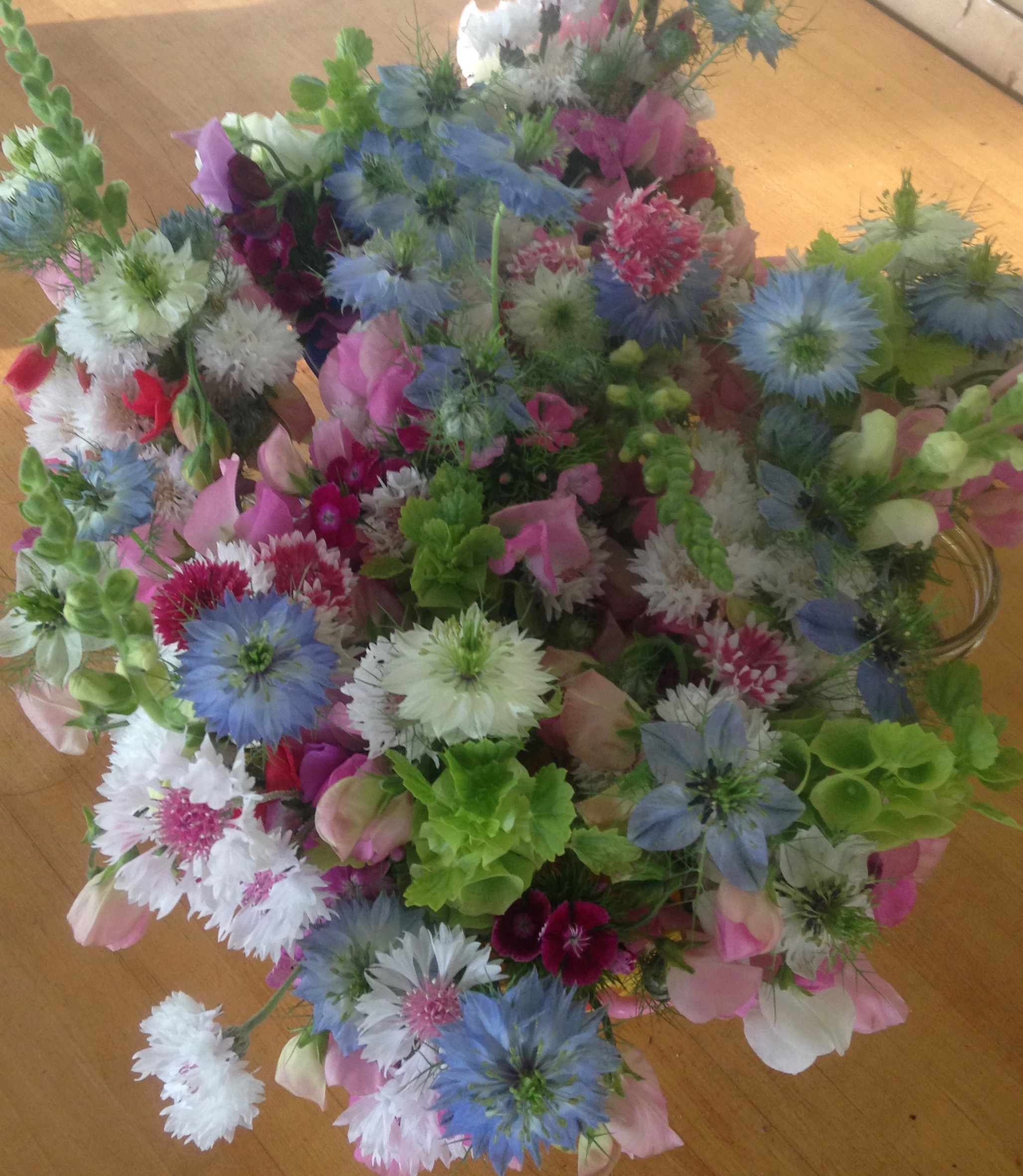 Nigella, Dianthus, Bells of Ireland, Bachlor Buttons