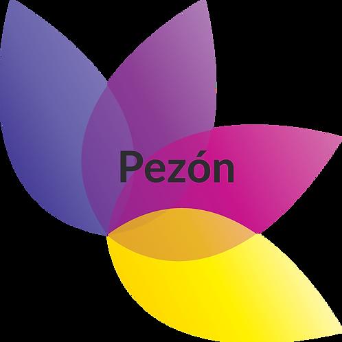 Pezón