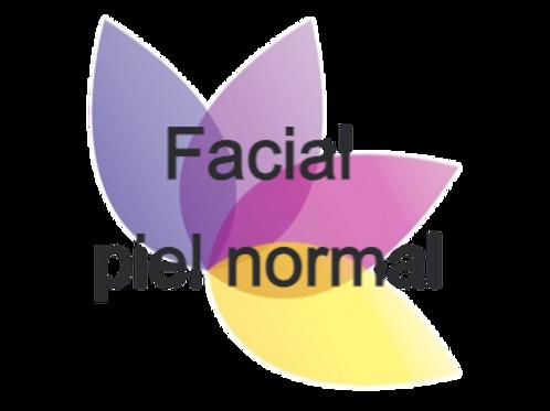 Facial piel normal