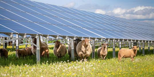 Garballagh Lower Solar Farm