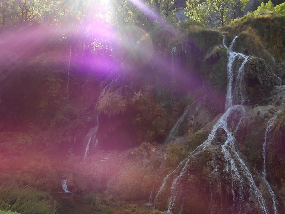 rayonnement violet en forêt