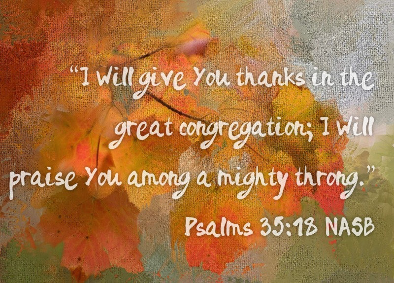 Psalm 35 18.jpg