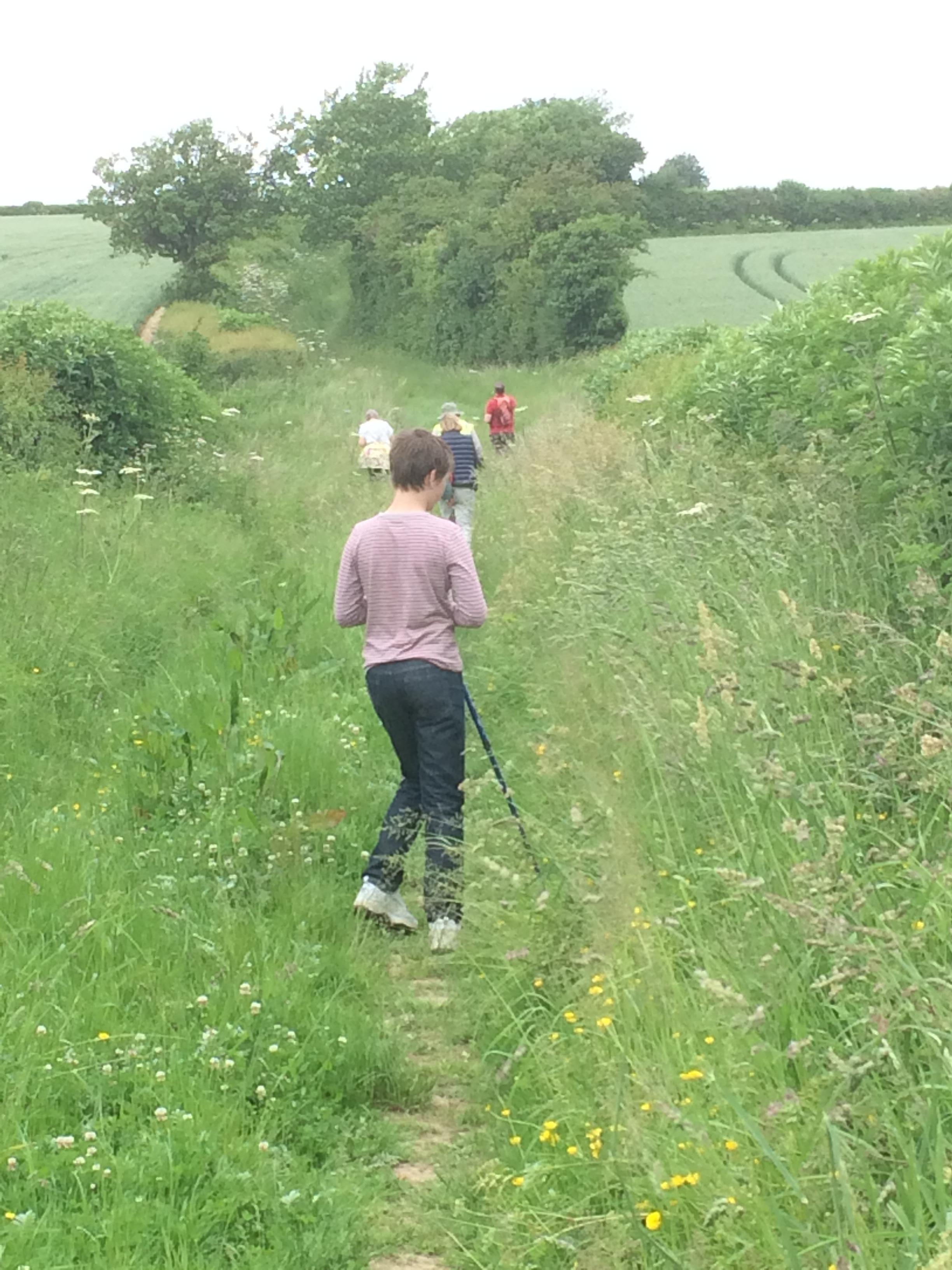 A nice grassy track