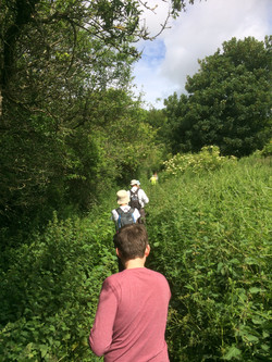 Through a forest of nettles!